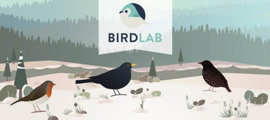 BirdLab, 6ème saison : c'est parti !